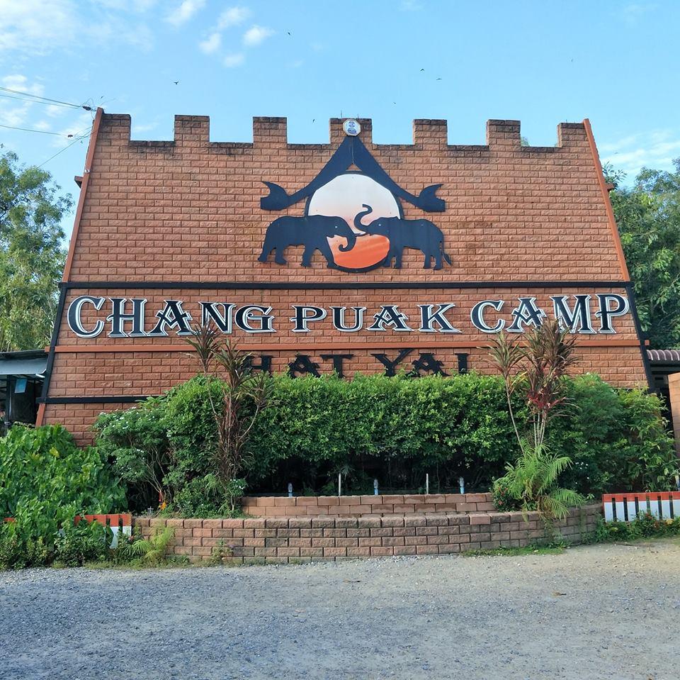 hatyai elephant camp